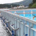 Уникальный плавающий бассейн скиммерного типа фото 27